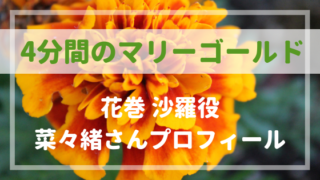 4分間のマリーゴールド花巻沙羅役菜々緒さんプロフィール!前髪有で清純派に!